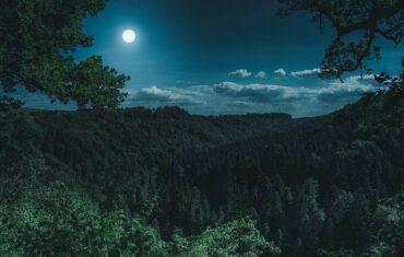Romantischer Urlaub zu zweit im Schwarzwald